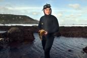 "Anton, Porto-Munios diver, collecting seaweed ""Kombu."" Barizo, Malpica (Spain)."