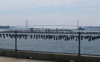 Verrazano-Narrows Bridge from the pier at the Staten Island Lighthouse Depot. Photo: Meredith Arout for Life-Wire News Service.